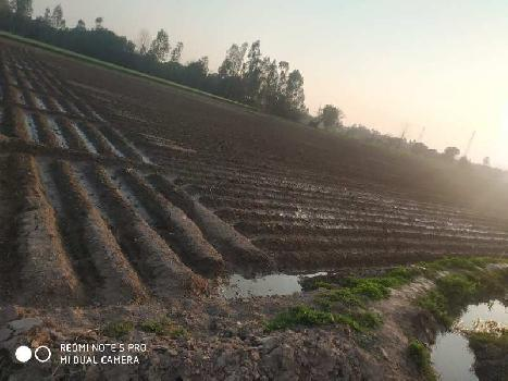 18 acres land for sale near raipur rani district ambala tehsil narainghar panchkula