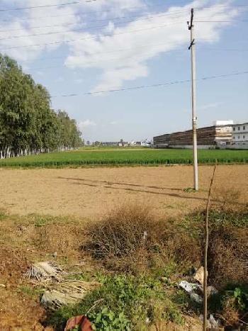 5acre prime location land in barwala panchkula haryana