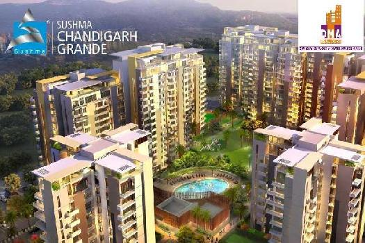 3bhk flat for rent sushma grande zirakpur
