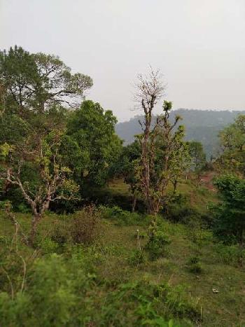 FARM LAND FOR SALE MORNI HILL PANCHKULA HARYANA