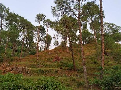 prime location farm land for sale morni hill panchkula