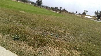 Agricultural/Farm Land for Sale in Pushkar, Ajmer
