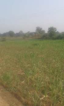 5 bigha bagayti farm land