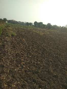 7.5 Acer Agriculture Land full water At vichve gaon bodwad road