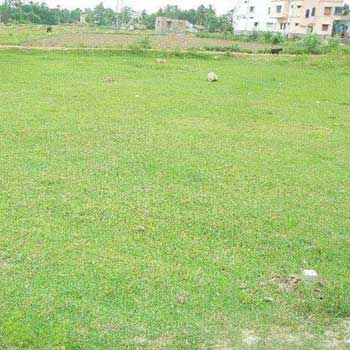 Residential Plot for Sale in Bardhaman