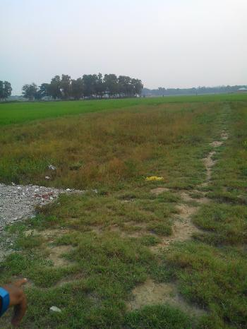 Agricultural/Farm Land for Sale in West Bengal