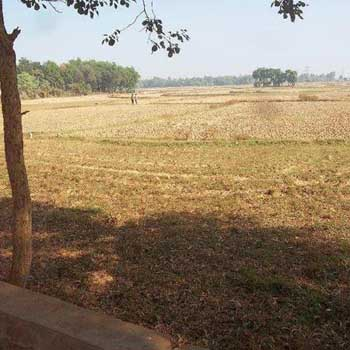 Agricultural Land For Sale In JMR, Bardhaman