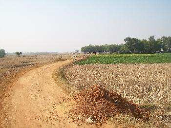 Agricultural/Farm Land for Sale in Kalna, Bardhaman
