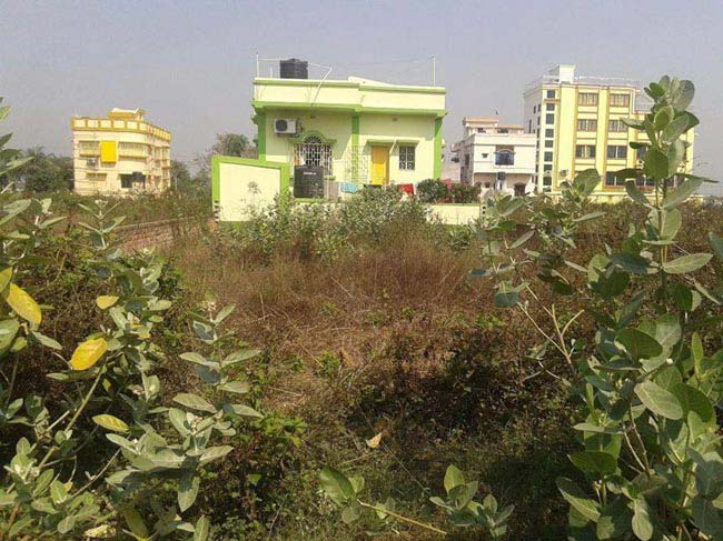 Residential Plot for Sale in Ulhas, Bardhaman