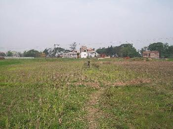Residential Plot For Sale In Goda, Bardhaman