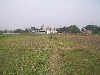 Agricultural Land For Sale In Mirzapure, Bardhaman