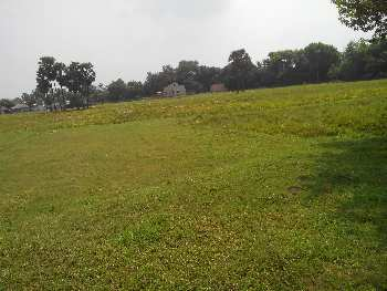 15 bigha agri.land sell in Kurmun, Bardhaman