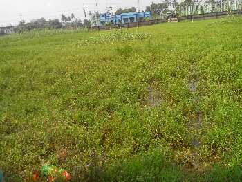 10 bigha agri.land sell in Malkita, Bardhaman