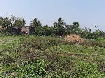 32 Katha Agri . farm land sell in Mirzapur near black red poultry farm Bardhaman