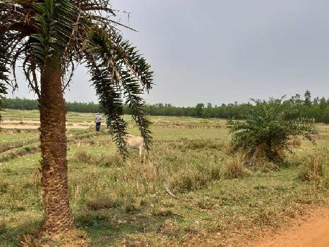 Industrial Land / Plot for Sale in Bardhaman