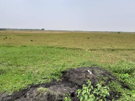 5 Bigha commercial land sell in NH2 near Galsi,bardhaman