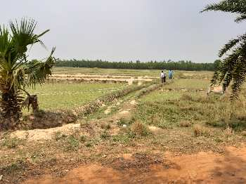 30 bigha industrial land land sell in near orgram,Bardhaman