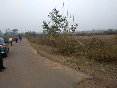40 bigha Agri.(project) land sell in Deul , Bardhaman.