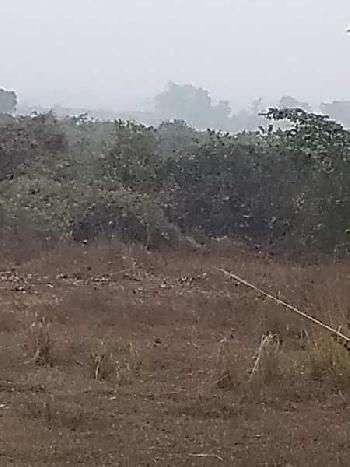 40 bigha Agri.(project) land sell in Deul , Bardhaman.
