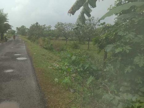 6 bigha commercial Indus. land for sale KALYANI EXPRESSWAY near halisahar