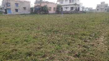 2 Katha land sell in narayan dighi Bardhaman
