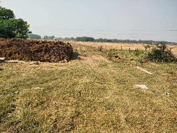 2 Katha plotting land Muslim community area sell in Saritighar near amtala,Bardhaman
