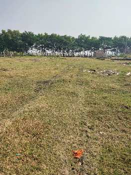 2 Katha plotting land  sell in Saritighar near amtala,Bardhaman