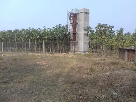 25 Bigha ready resort Agriculture land sell in aushgram-II bardhaman.