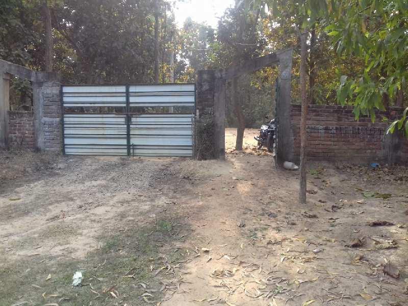 25 Bigha ready resort Agriculture land sell in aushgram-II bardhaman.