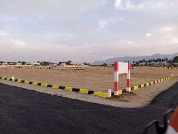 City limited approved plots.