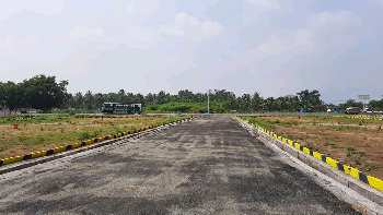 On road site.Dtcp approved plots in  vedasandur to Dindigul NH7... H7