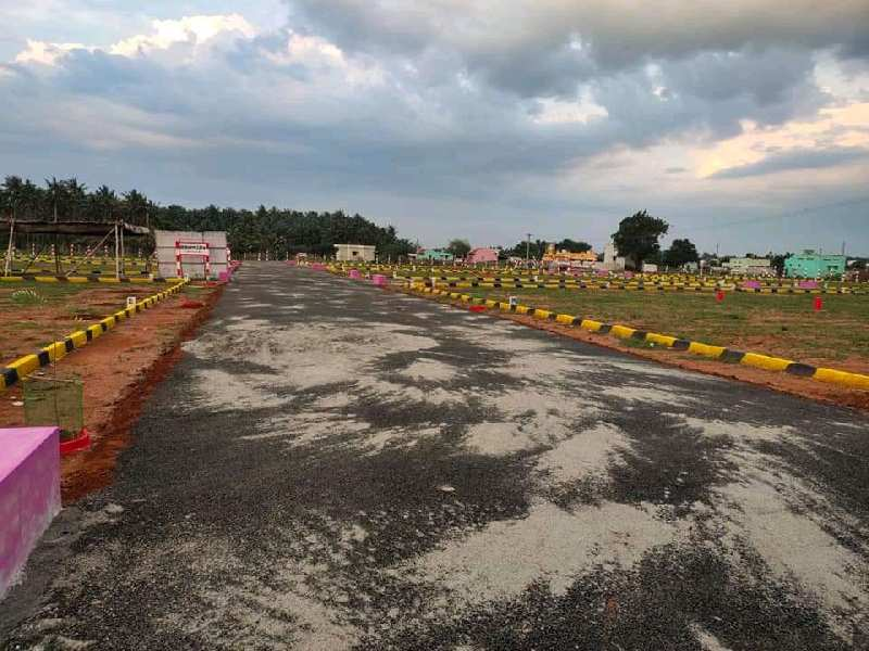 Low cost Dtcp approved plots in chinnalapatti