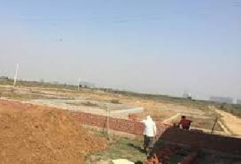 Agricultural/Farm Land for Sale in Najafgarh, Delhi