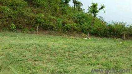 14 Acre Agricultural Land for Sale in Najafgarh