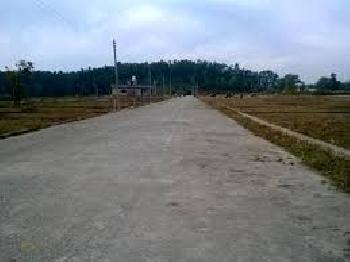 Residential Plot For Sale In Ghewra Mod, Nangloi