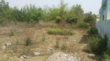 Residential Plot For Sale In Goyla Dairy Road, Dwarka