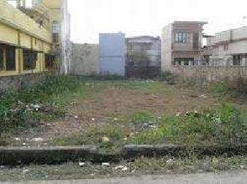 Residential Plot For Sale In Gopal Nagar, Najafgarh