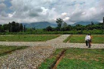 Residential Plot For Sale In Nangloi Road, Najafgarh