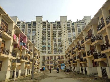 housing board socity