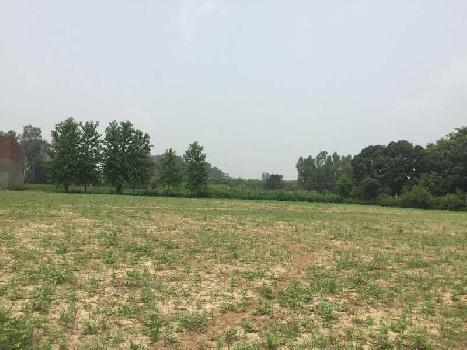 Residential Plot for Sale in Saha, Ambala