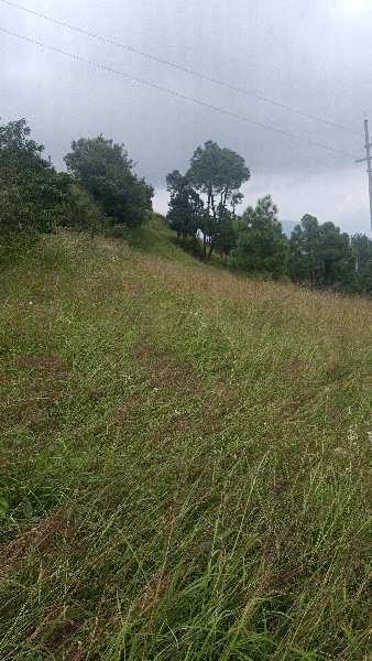Residence Land at Chail Shimla