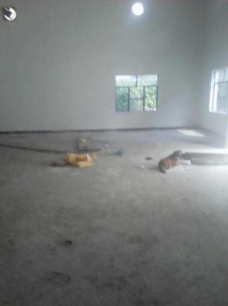 Warehouse For Rent In Mundka, Delhi