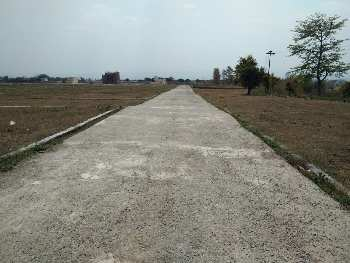 Ready to moving Plot Bahuwala Dehradun