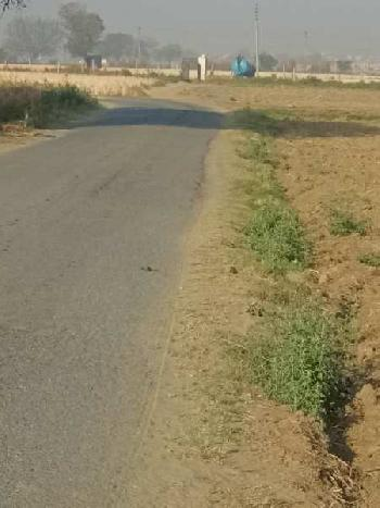 2000 gaj farm land available at Asoda Todran 33 feet road
