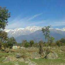 Residential Land for Sale in Palampur