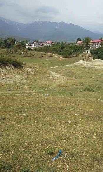 Residential Land for Sale in Choki, Palampur, Kangra