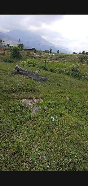 Residential Land for Sale In Dari , Dharamshala