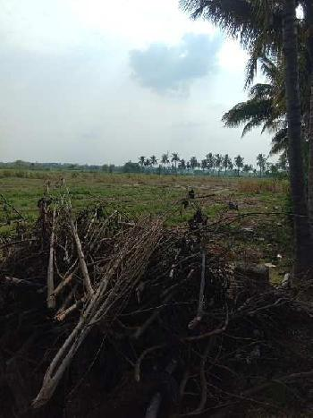 38 acres prime agricultural land 15 km from Baramati towards Thoratwadi.