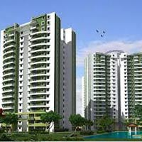 1 BHK Flats for Rent in Ashoka Marg