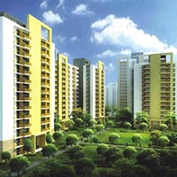 2 BHK Flats for Rent in Raka Colony